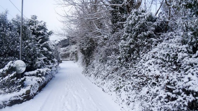 Back Lane in the snow..   #snowday